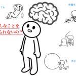 脳の成長とは